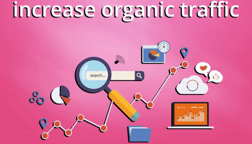 Increase organic traffic image